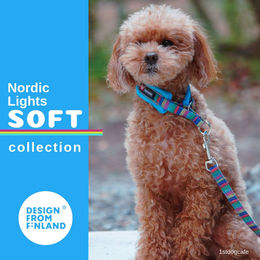 Nordic Lights Soft panta turkoosi