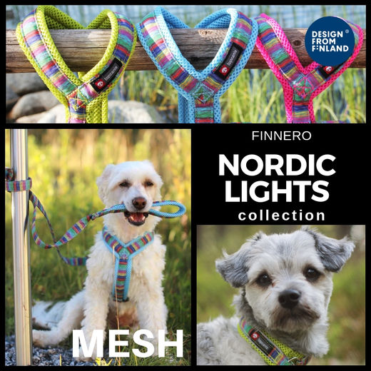 Nordic Lights Mesh mallisto