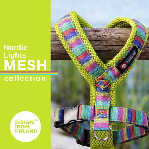 Nordic Lights Mesh lime